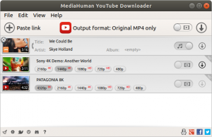 Mediahuman YouTube Downloader Crack v3.9.9.46 (2609)